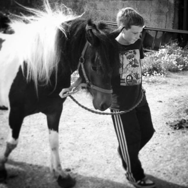 Young Boy leads Horse to new home