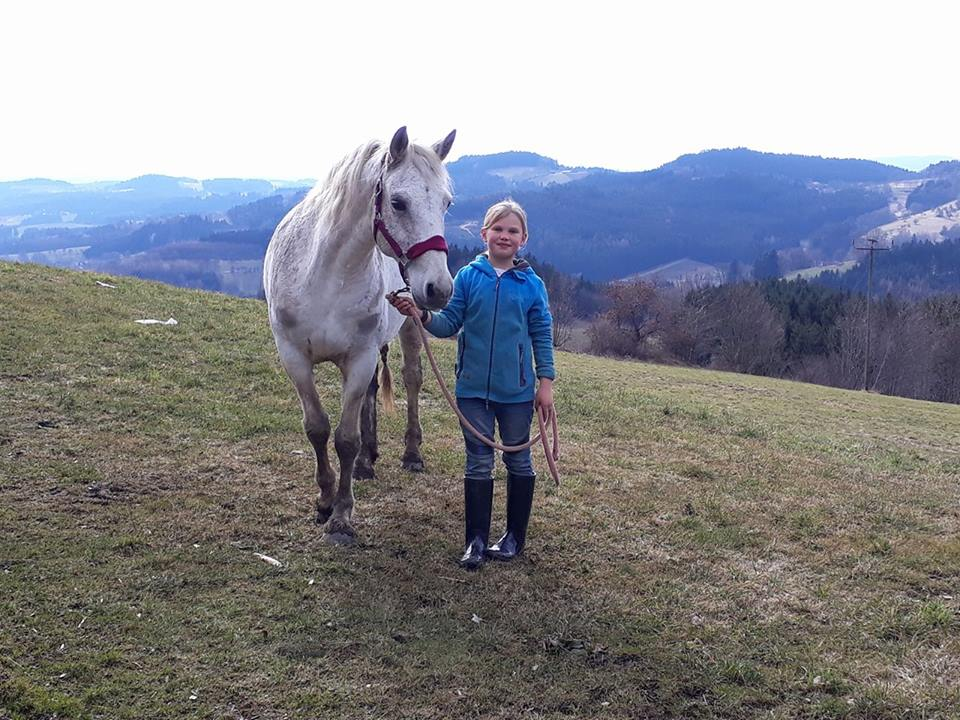 HHO Megan has surely landed on her hooves, gained a family and a new best friend. We love hearing from the HHO Horses who have left us for new lives.